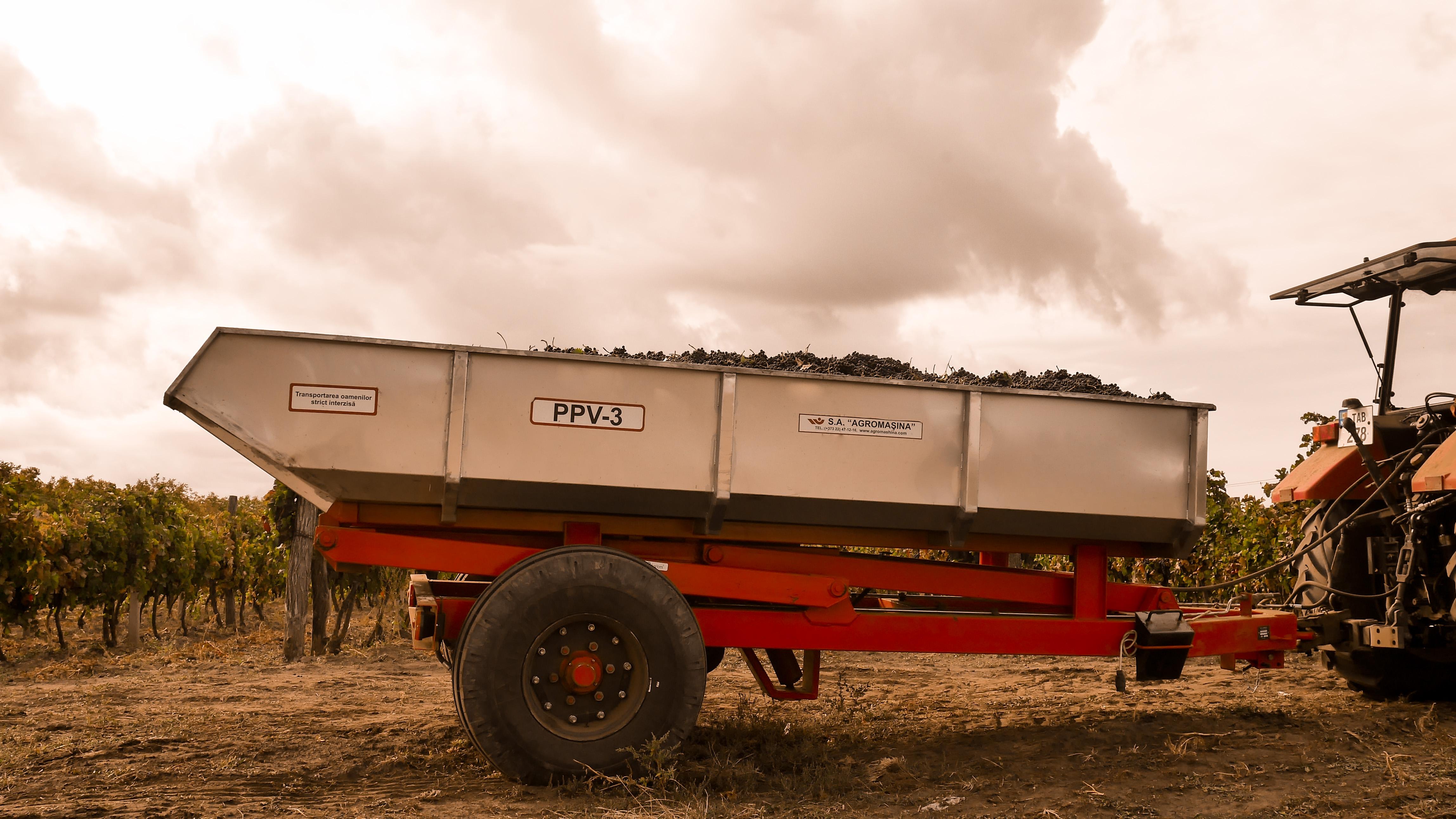 Semiremorca pentru transportarea strugurilor  PPV-3 (3t) - Image 3
