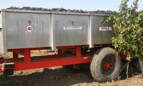 Semiremorca pentru transportarea strugurilor PPV-4 (4t) - Image 5
